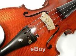 D'Addario Pro Arte Violin Strings-Medium Gauge, 4/4 Full Size, One Set